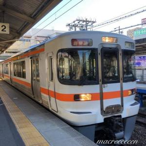 JR東海313系Y45編成   新快速大垣行き