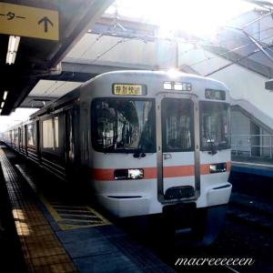 JR東海313系Y2編成   特別快速大垣行き