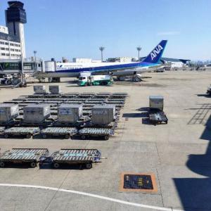 人生で初めて新潟へ旅立つ愉快なおっさん