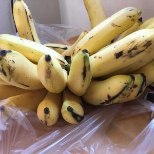 チェンマイでブラブラ バナナ