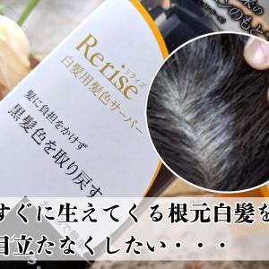 花王のRerise(リライズ)で髪を染めてみたら白髪染めが楽になった話【写真付体験談】