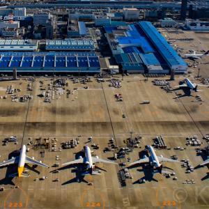 【国内エアライン図鑑】全25社を写真付きで紹介日本国内に就航する定期航空会社カタログ