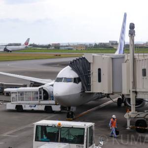 【那覇(OKA)→宮古(MMY)】2020年に完全退役するスーパードルフィン全日本空輸(ANA)B737-500搭乗記
