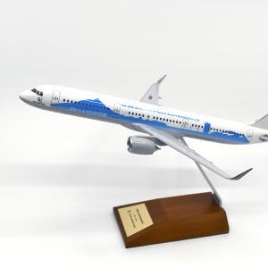 【2019年最新版】実際にあげた、飛行機好きへのプレゼント決定版!