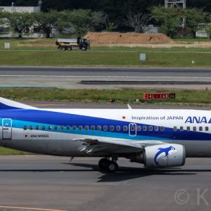【スーパードルフィン】ANAのB737-500がまもなく退役!最終運航日はいつ?予約画面から判明!
