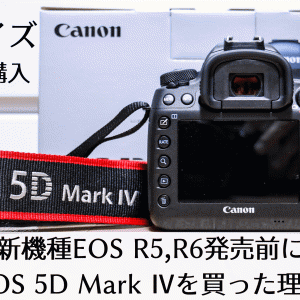 【キャノンフルサイズ一眼レフ購入】新機種EOS R5,R6発売前にEOS 5D MarkⅣを買った理由。3機種を徹底比較!