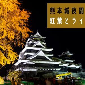 【城あかり2020】ライトアップされ秋の紅葉に染まった熊本城の夜間特別公開に行くと最高の写真が撮れた