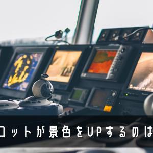 パイロットがコックピットで写真を撮っただけでアウト!?それだけで処分される日本のルールとは