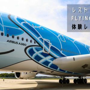 【成田発着】ホノルル線の旅気分!「ANA レストランFLYING HONU」に参加して世界最大旅客機エアバスA380を間近で体感してきた