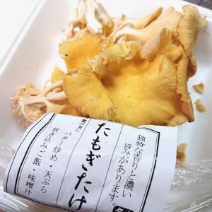 きのこを食べた