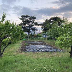 3DK駅近月額1万円の賃貸物件