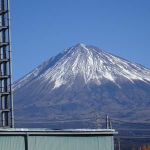 岩合さんの世界ネコ歩き「富士・静岡」
