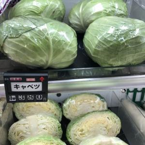 梅雨明けのお野菜事情