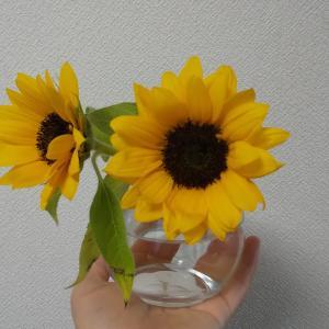 【おうちモンテ】花を生けるお仕事