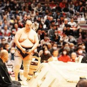 大相撲トーナメント その➄
