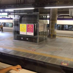 【子連れ旅行】日帰り山梨ぶどう狩り・新宿からホリデー快速やなましに乗る