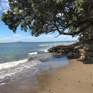 【ニュージーランド親子留学】ファンガパラオ半島のホームステイ