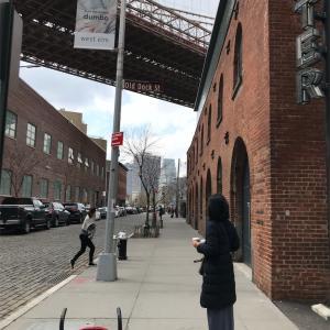 【ニューヨーク単身2人子連れ旅行】オシャレな街ブルックリンでランチ&公園で遊ぶ