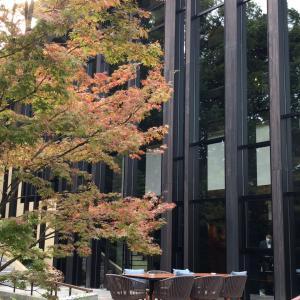 フォーシーズンズ京都。積翠園のテラス席で絶景朝ごはん。
