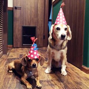 HAPPY BIRTHDAY レトロ♪