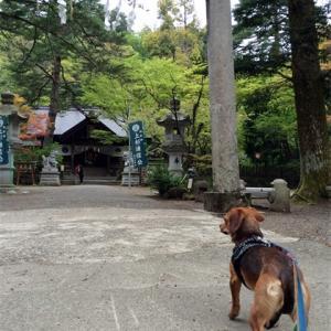 春日山城跡と神社 (新潟県上越)