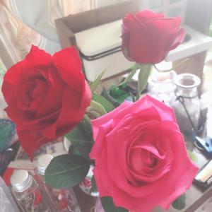 完璧だと思っても、もう一押しすれば、薔薇が手に入る。