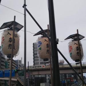 2019年(令和元年)の朝顔市(朝顔祭り)