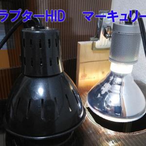 セルフバラスト水銀ランプとメタハラの比較検証!