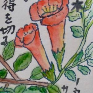 横浜綱島絵手紙教室 9月の絵手紙