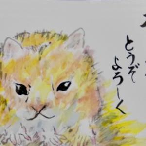 横浜綱島絵手紙教室 11月の絵手紙