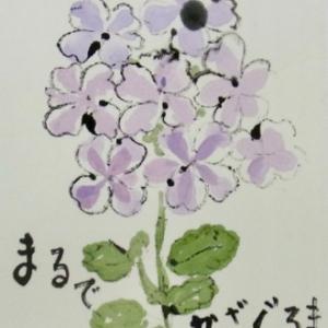 小山ヶ丘絵手紙教室7月の絵手紙