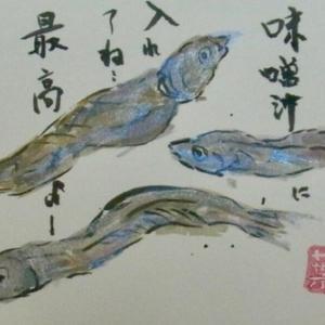 横浜綱島7月の絵手紙
