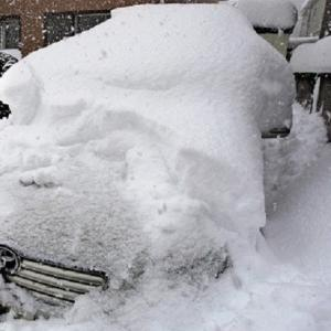 今晩は雪?