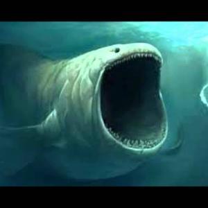 深海に響く怪音「Bloop(ブループ)」