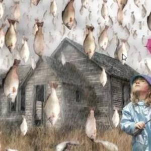 空から魚が降ってくる!?ファフロツキーズ現象の謎