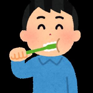 昼食後に歯を磨きますか?