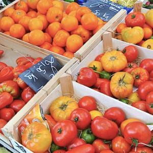 トマトのおいしい季節