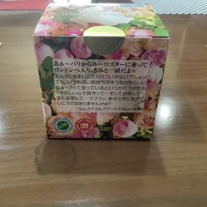 美味しいお茶を頂きながら美少年の「ねぇもっと」を鑑賞!岩崎くんってKAT-TUNの田口くんに似てるよね?