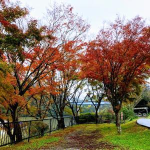 2019.11.27亀山湖