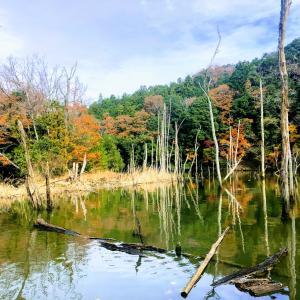 2019.12.11笹川湖(片倉ダム)