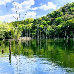 2019年の笹川湖(片倉ダム)