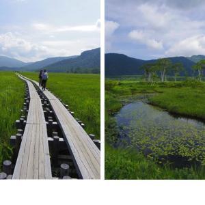 《尾瀬》2012年7月の山旅_初めて尾瀬を歩く