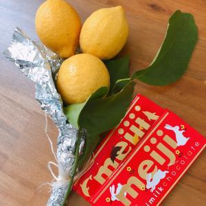 レモンとメガビタミンC点滴