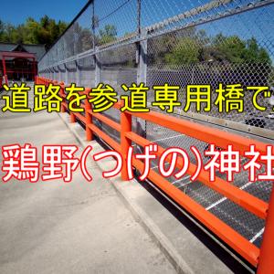 【Vlog】高速道路を参道専用橋で渡る『闘鶏野(つげの)神社』(大阪府高槻市)
