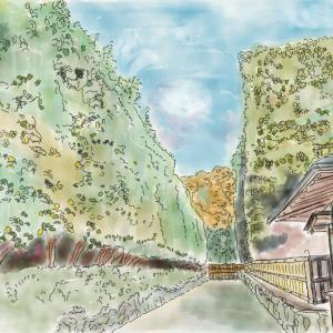 京都 冬の寺巡り その3