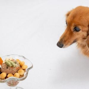 家計管理のことで夫婦喧嘩。 まじで犬も食わない夫婦喧嘩の収め方。