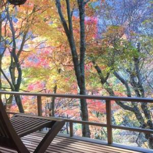 【配当金で旅行】晩秋の信州旅行「緑霞山宿 藤井荘」で心身を癒す。
