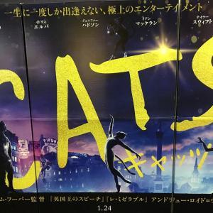 キャッツ映画版、観てきました。