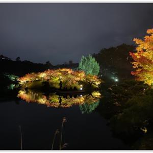 娘のお土産話 夜の栗林公園ライトアップ2