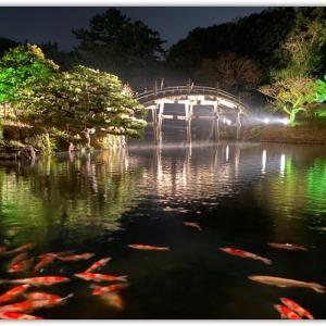 夜の栗林公園(娘のお土産話)